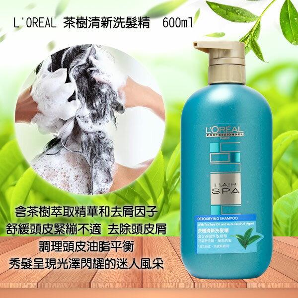 萊雅LOREAL茶樹清新洗髮精600ml