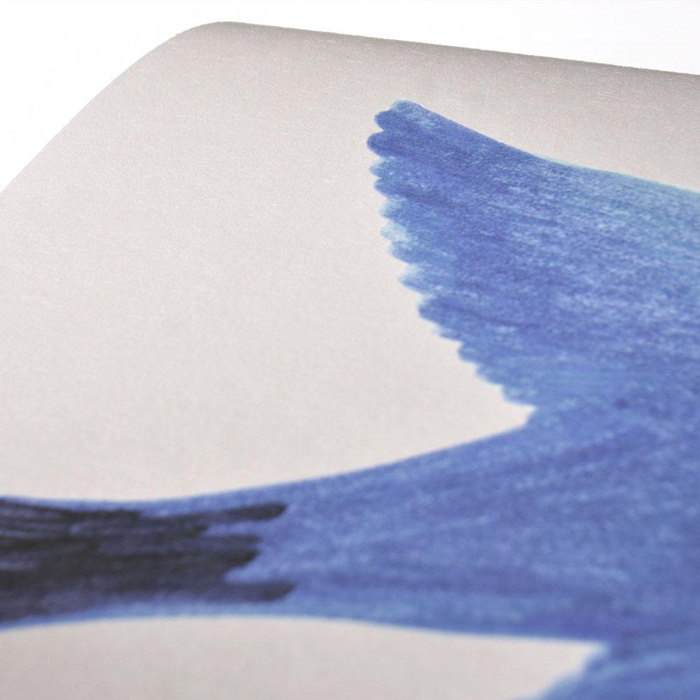 法國壁紙  鳥紋  兒童房壁紙  Season Paper Parrots PP-S1901  壁紙 3