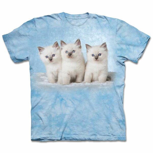 『摩達客』[ 預購 ](大尺碼3XL) 美國進口【The Mountain】自然純棉系列 雲朵小貓 T恤