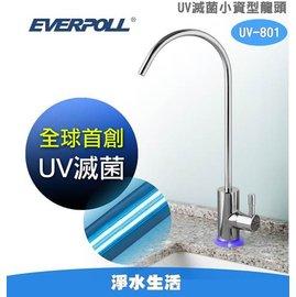 【淨水生活】《EVERPOLL 愛惠浦科技》UV 滅菌小資型龍頭 (UV-801) 全球首創 專利技術 免費基本安裝
