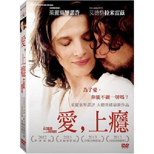 愛,上癮DVD