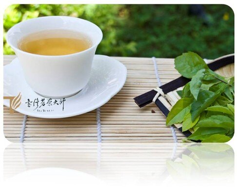 免運【體驗價】碧螺春綠茶( 5g) ~兒茶素最多的茶,元氣滿滿的養生茶,上班族每天必喝一杯喔! 每人限購一次喔!