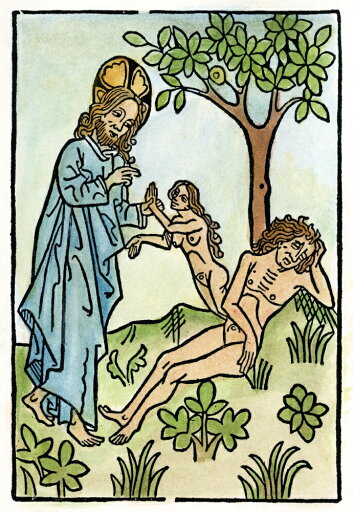 Adam And Eve Ngod Creating Eve From The Rib Of Adam As He Sleeps Under The Tree Of Knowledge Woodcut 15Th Century Rolled Canvas Art - (18 x 24) b4aa32d04e73529675b062a00653c3c8