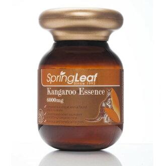 Spring Leaf 綠芙特級 超級袋鼠精膠囊 60顆/瓶◆德瑞健康家◆