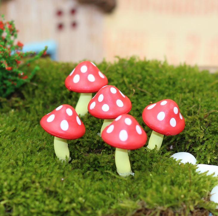 [Hare.D] 多肉 盆栽 擺飾 紅蘑菇 蘑菇 龍貓 擺件 微攝影 造景