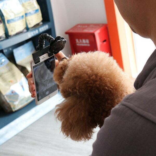 美琪(寵物拍照神器)petselfiestick貓咪狗狗看鏡頭自拍夾寵物用品