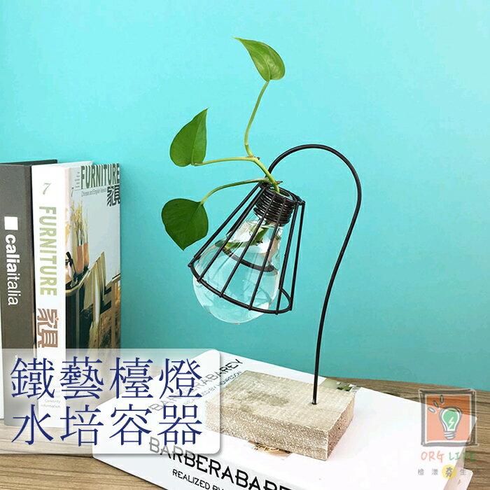 ORG《SD1534》鐵藝風格~檯燈 水培容器 水養 花瓶 盆栽盆景 創意盆栽 花盆 透明玻璃 辦公室 裝飾品 園藝用品