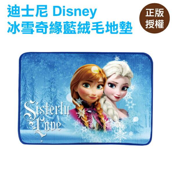 冰雪奇緣絨毛地墊-藍 腳踏墊 門墊 迪士尼 Disney〔蕾寶〕