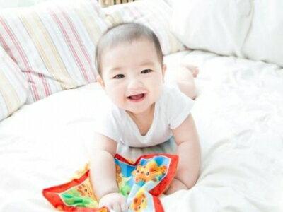 Toy Royal 樂雅 安撫手帕【悅兒園婦幼生活館】 1