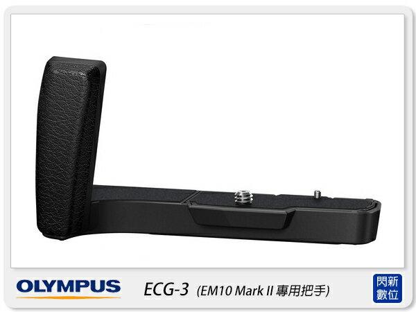 OLYMPUS ECG~3 把手 握把 手把^(ECG3 EM10 Mark II EM1