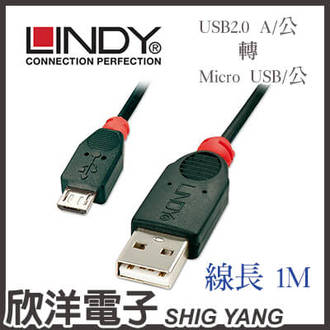 ※ 欣洋電子 ※ LINDY林帝 USB2.0 A/公 轉 Micro B/公 傳輸線(31664) 1m/1米/1公尺