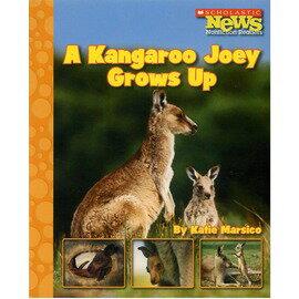 ◎A Kangaroo Joey Grows Up(Scholastic)中年級適合