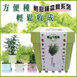 iPlant樂高農場輕鬆種盆栽系列-蔬果款/療癒小品/專利設計〔網購家〕