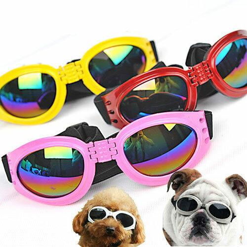 🌞中大型犬防風防曬必備🌞炫目防曬防風可折疊式太陽眼鏡.6色-翹翹鬍子