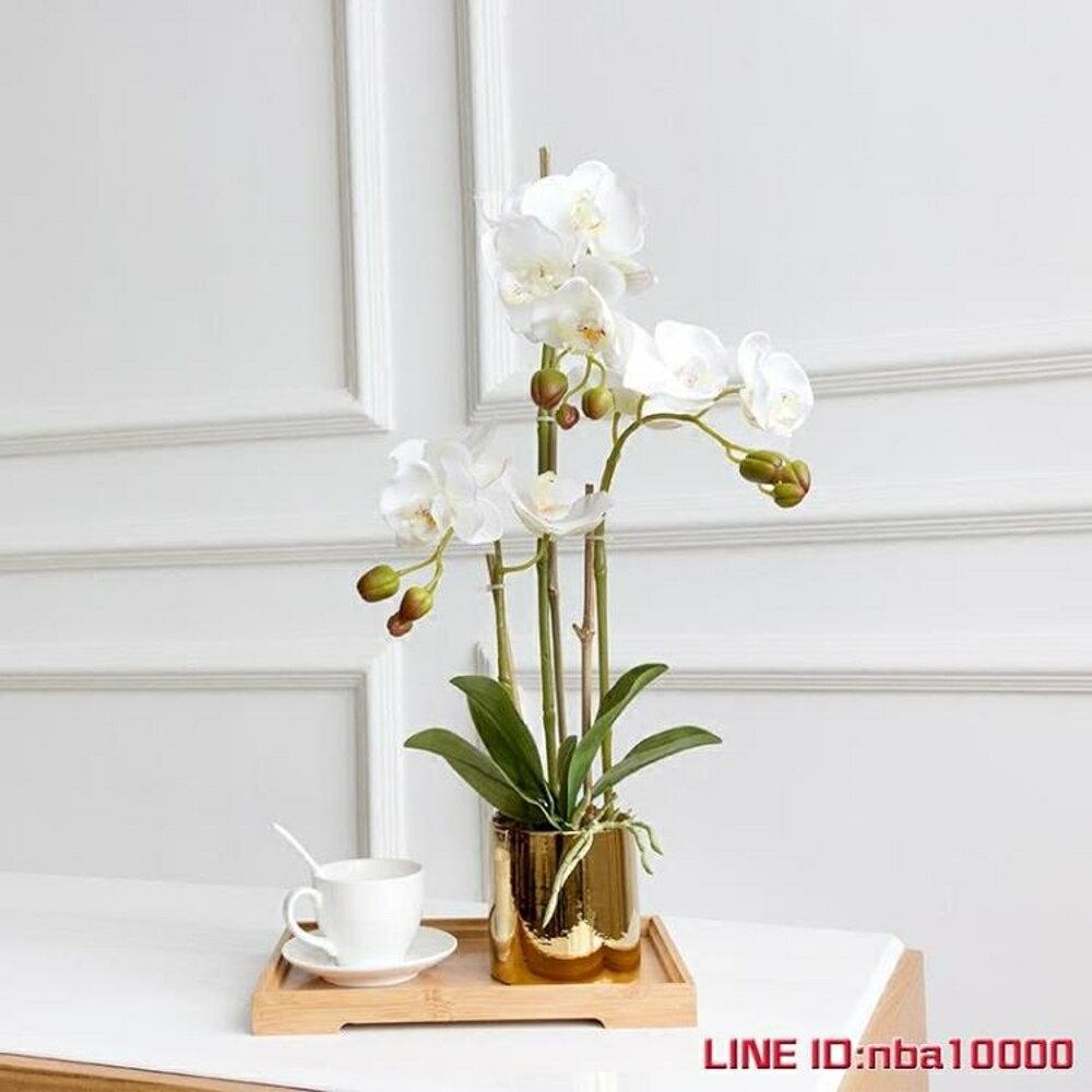 手感保濕蝴蝶蘭仿真花套裝花瓶盆栽假花裝飾花客廳擺設花藝3杈花 JD CY潮流站 2