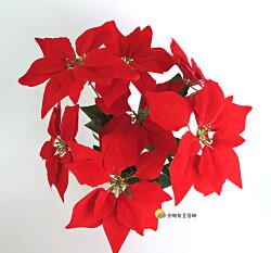 [橘子空間裝置藝術] 新款 人造7頭絨布聖誕紅花束 另有活體植物☆聖誕節佈置.人造花.居家.店面.櫥窗.玄關.大廳擺飾☆