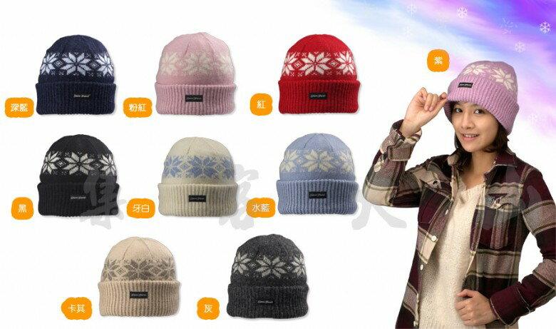 【露營趣】中和 SNOW TRAVEL 男女3M高級羊毛帽 保暖帽 毛線帽 遮耳帽 反摺帽 摺邊帽 北海道歐洲賞雪登山皆宜 AR-18C