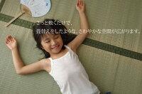 日本IKEHIKO夏日涼感系列/藺草涼蓆/526082。共1色-日本必買 代購/日本樂天代購(4980-5780*1.7)-日本樂天直送館-日本商品推薦