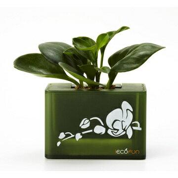 iEcofun創意造型花器-積木花盒(綠)