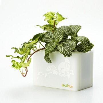 iEcofun創意造型花器-積木花盒(白)