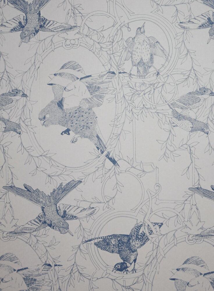 Daniel Heath   Taxidermy Birds  Blue  壁紙 (訂貨單