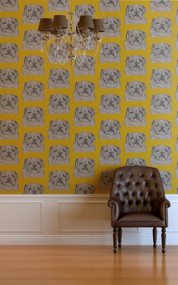 The Graduate Collection / Bulldog Wallpaper Mustard 壁紙 (訂貨單位52cm×10m/卷)