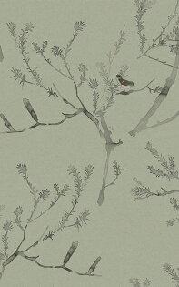 壁紙屋本舖:手畫水彩風壁紙綠色鳥紋Quercus&Co.澳大利亞進口壁紙TheCoastlandIICollectionHeathBanksiaTeaGreen