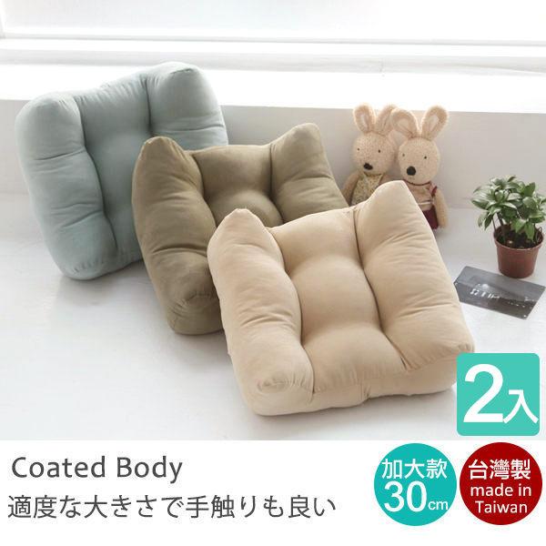 靠枕/腰枕 30X30厚實加大靠腰枕2入(隨機出貨) MIT台灣製 完美主義【I0141-A】