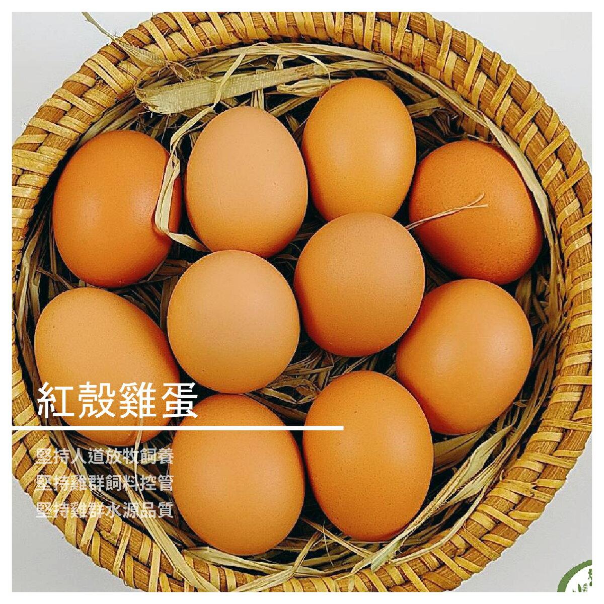 【御品園蛋品行】紅殼雞蛋特惠組10入/4盒禮盒裝