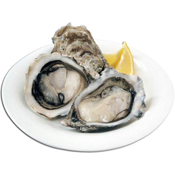 【璽富水產】澎湖帶殼牡蠣2包組(500g包約6~8顆)
