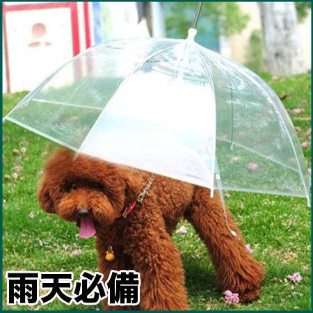 簡約時尚透明寵物雨傘-翹翹鬍子