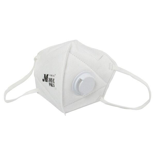 淨舒式PM2.5防霾口罩2入裝