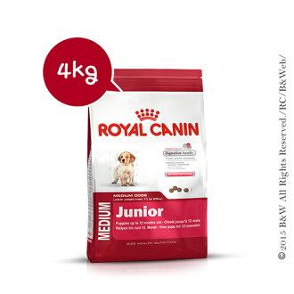 《倍特賣》法國皇家 中型幼犬AM32 4KG