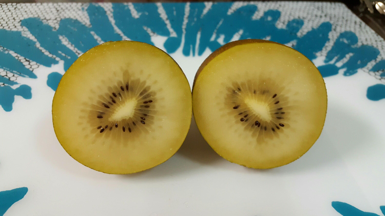 【免運】營養單值最高!紐西蘭金圓頭奇異果。香甜營養多更多!原價1070打九折960元 1