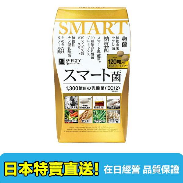 【海洋傳奇】【日本出貨】日本 SVELTY SMART菌 乳酸菌 56粒 / 120粒 1