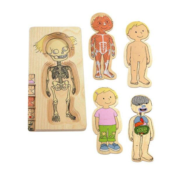 【華森葳兒童教玩具】益智邏輯系列-多層拼圖-女孩K2-17128