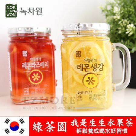 韓國 綠茶園 我是生生水果茶 500g 水果茶 內有果片 水果茶瓶【N101548】