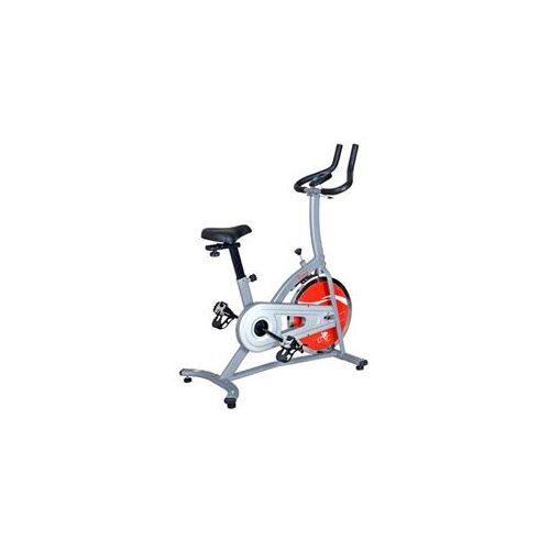 Sunny Indoor Cycling Bike 0