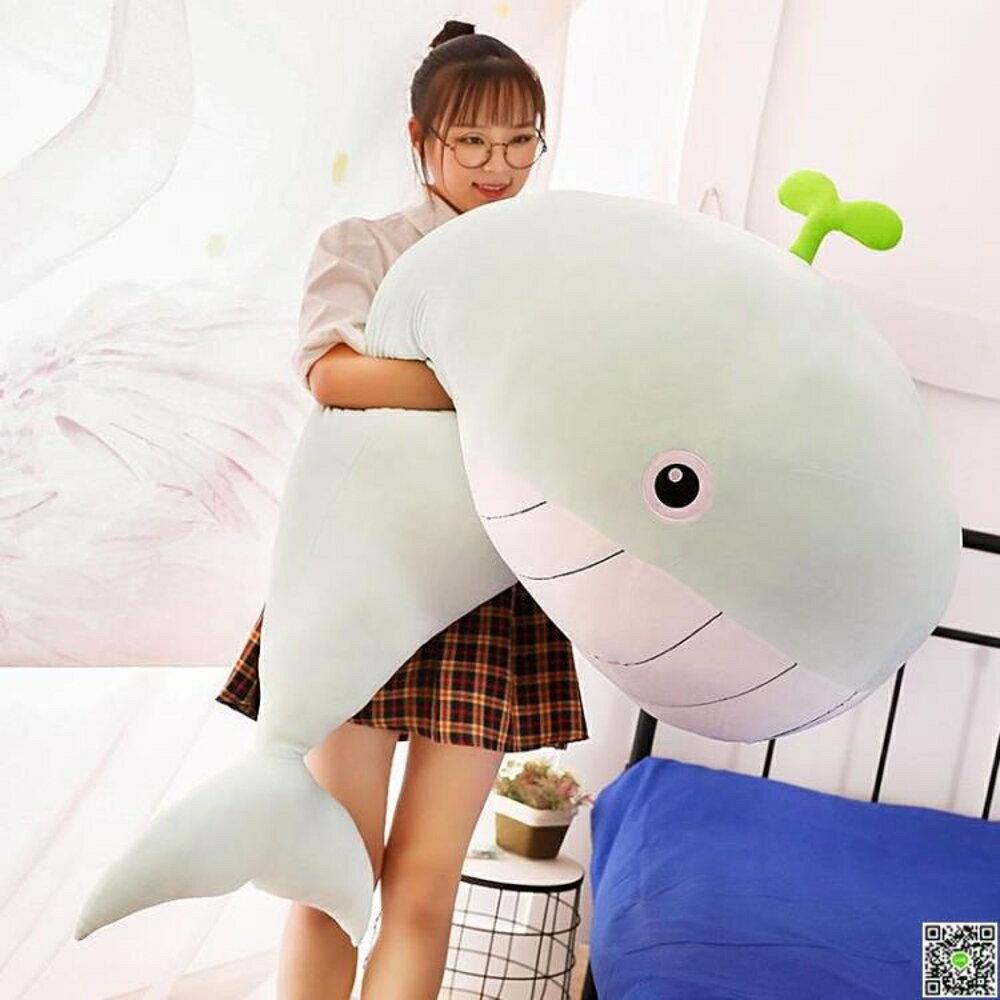 毛絨玩具女生抱枕公仔可愛懶人抱著睡覺的大布娃娃玩偶鯨魚萌海豚 中秋節禮物 領券下定更優惠