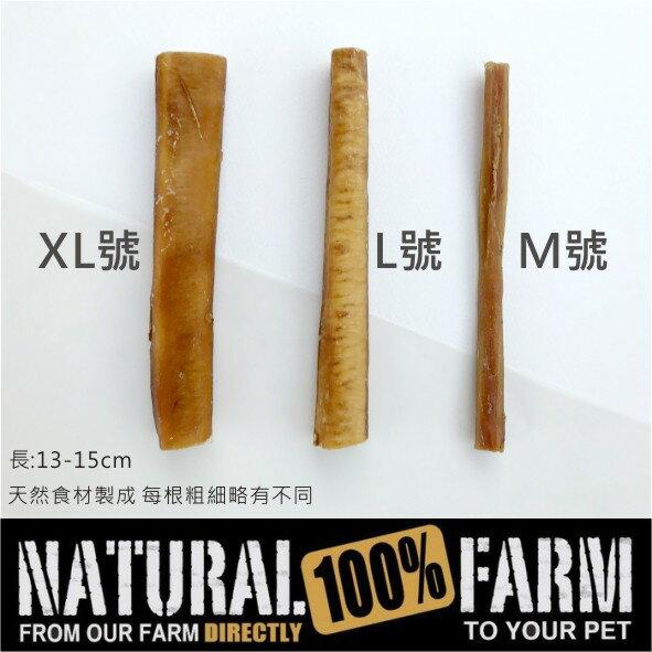 紐西蘭Natural Farm100%純天然超耐咬牛腱棒-L號 Pet's Talk 1