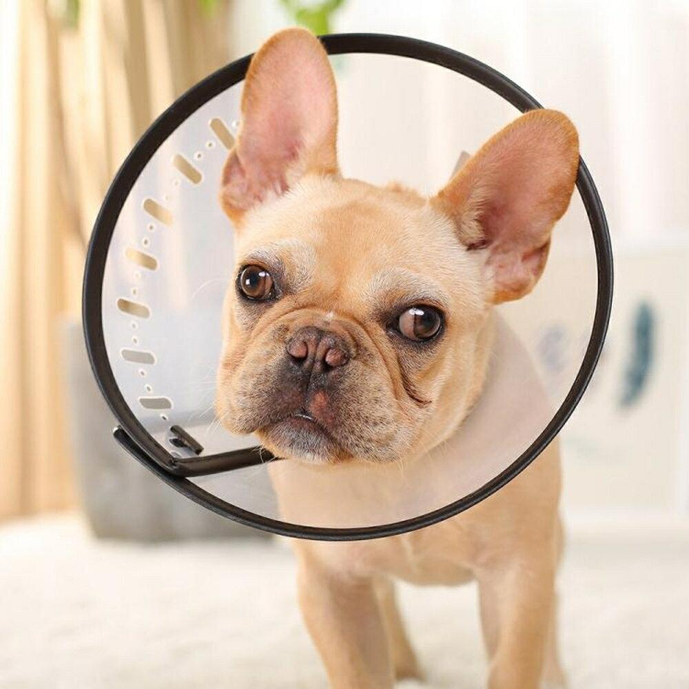 伊麗莎白圈貓咪套頭罩狗狗頭套防咬防舔圈寵物脖套狗圈頸圈狗項圈     西城故事