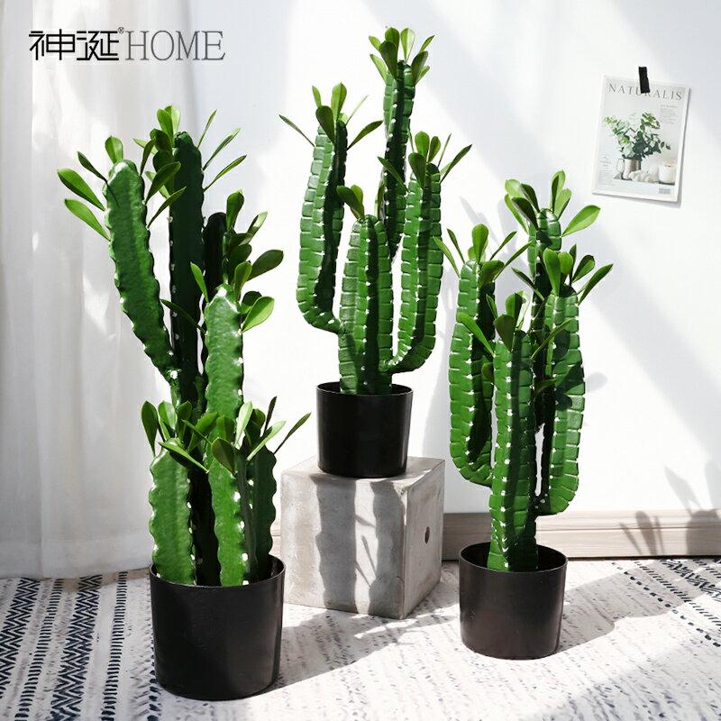 仿真植物仙人掌擺件北歐家居室內假綠植盆栽仙人柱網紅ins風裝飾