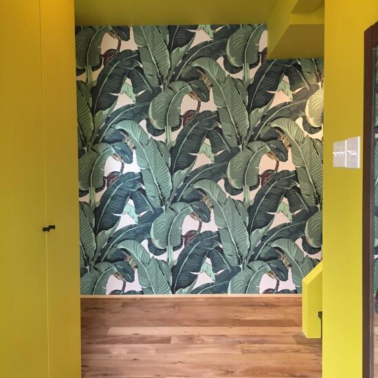 客廳裝修 綠色植物