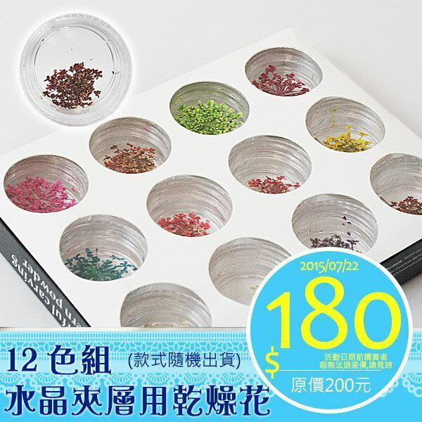 水晶指甲夾層用乾花 乾燥花12色入(隨機出色,每色約3g) 凝膠指甲裝飾乾花