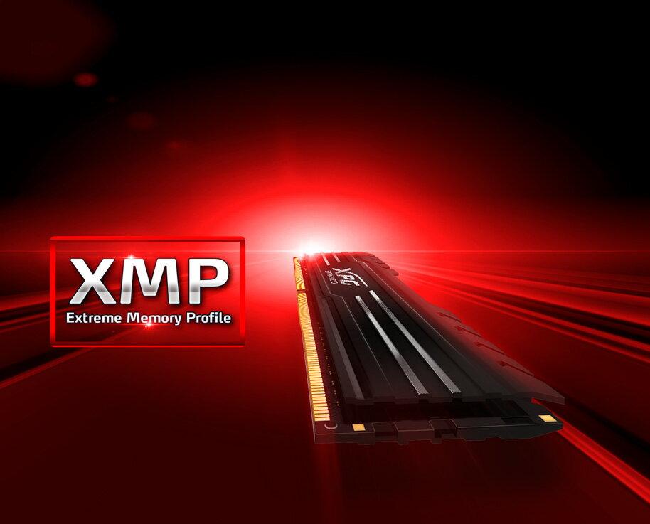 ADATA XPG GAMMIX D10 16GB (2 x 8GB) 288-Pin DDR4 SDRAM DDR4 2666 (PC4 21300) Desktop Memory Model (AX4U266638G16-DBG) 5