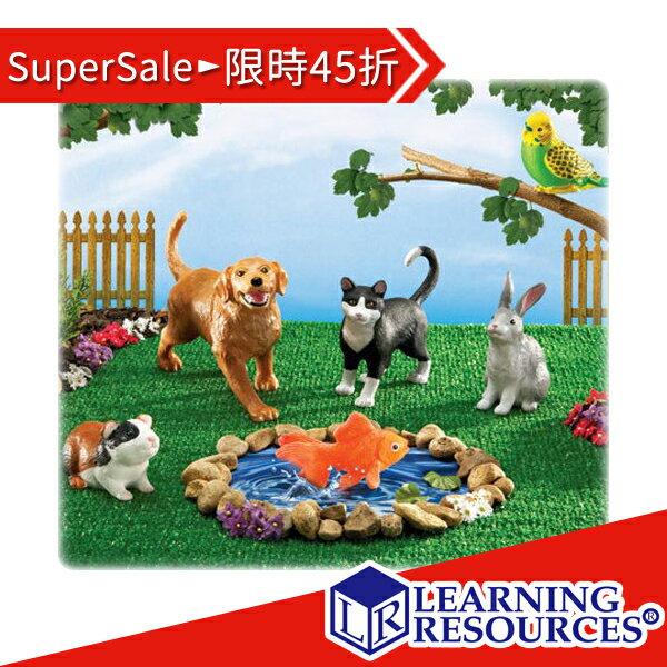 特賣免運組合45折【美國教學資源】超大家庭寵物(6入)LER0688