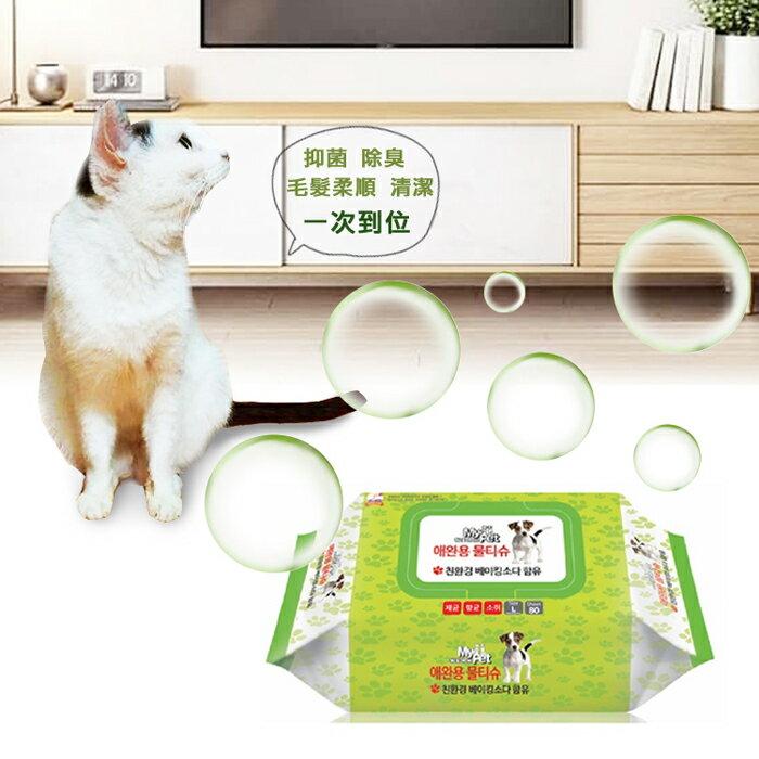 (加贈健康時刻潔牙骨乙包)【韓國 DAILY WATER】寵物專用抗菌去味濕紙巾 4包組 1