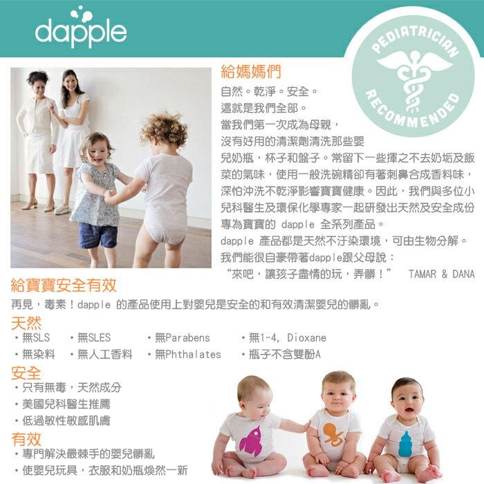 Dapple - 天然奶瓶及餐具清潔液 (無香精) 1L 補充包 2