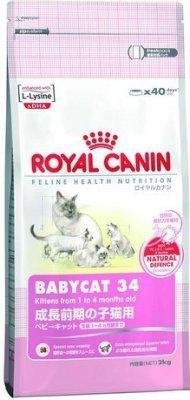 Royal Canin 法國皇家 離乳貓 BC34 10kg/10公斤