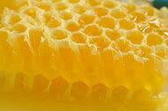 【食在加分】小罐蜂蜜綜合組~ 蜜源純淨 天然熟成 ~ / 250g*3 1